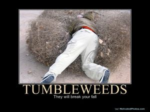 Tumbleweeds will break your fall - but don't you have to hit the ground before you can get back up again?