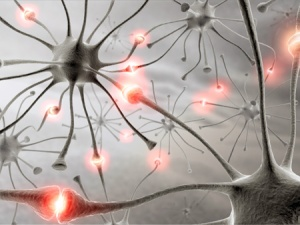 Neurons that fire together, wire together (learning).