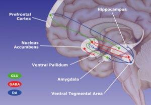Blue - Dopamine
