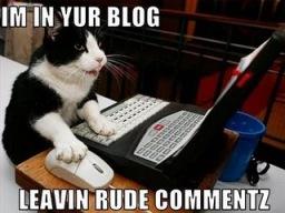 blogger cat
